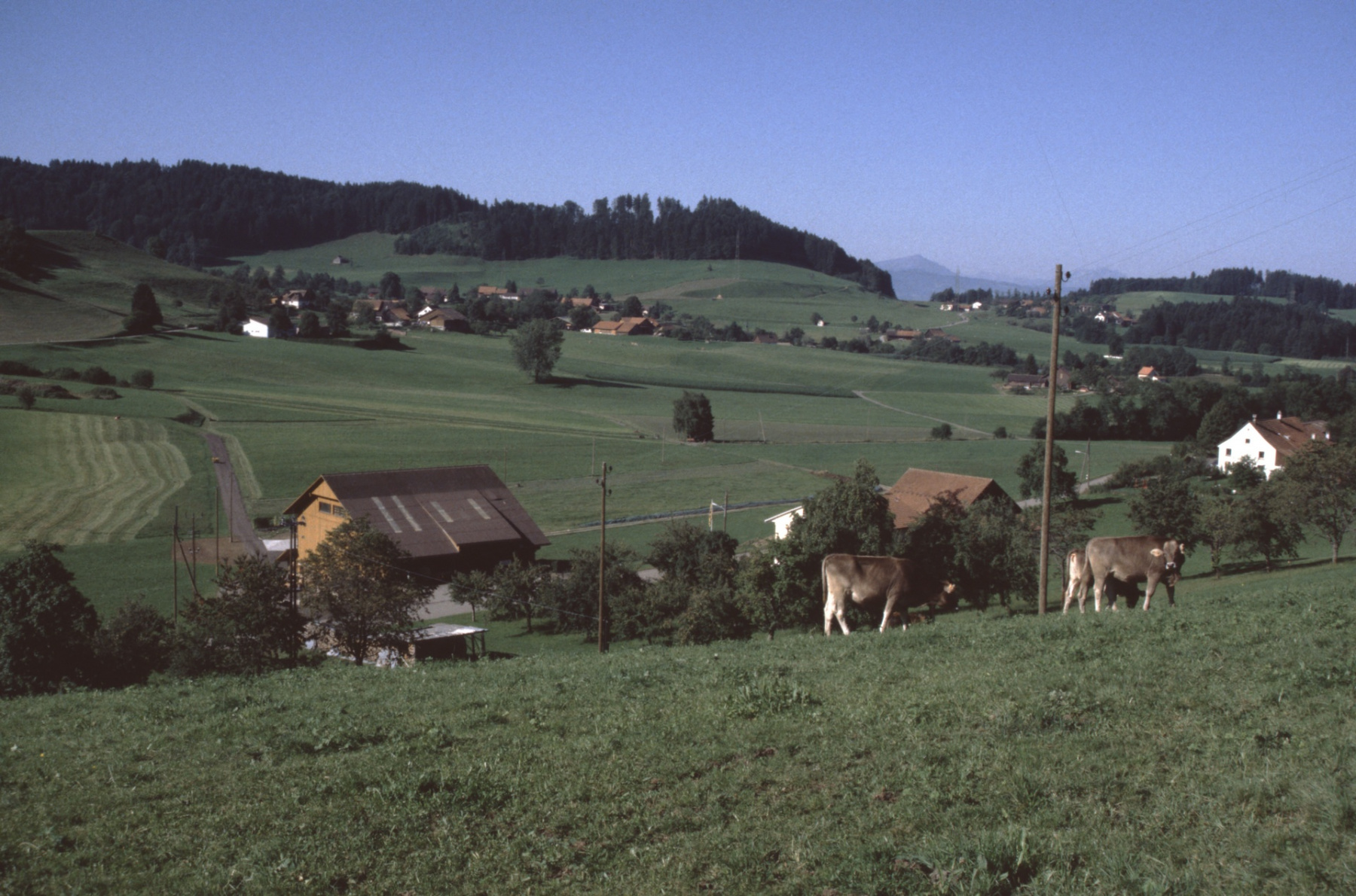 Blick von der Halde Rtg Wappenswil