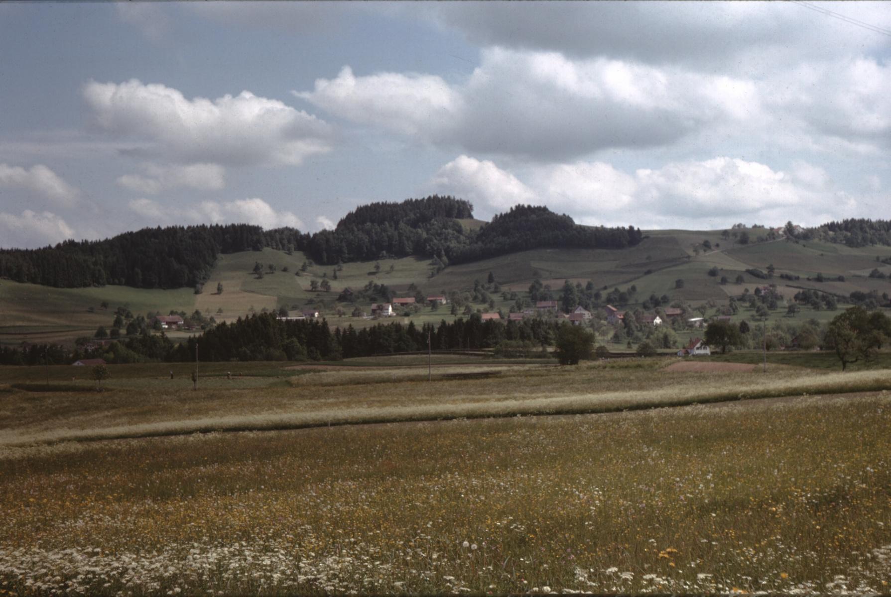 Blick vom Tisenwaltsberg auf Vorderbettswil