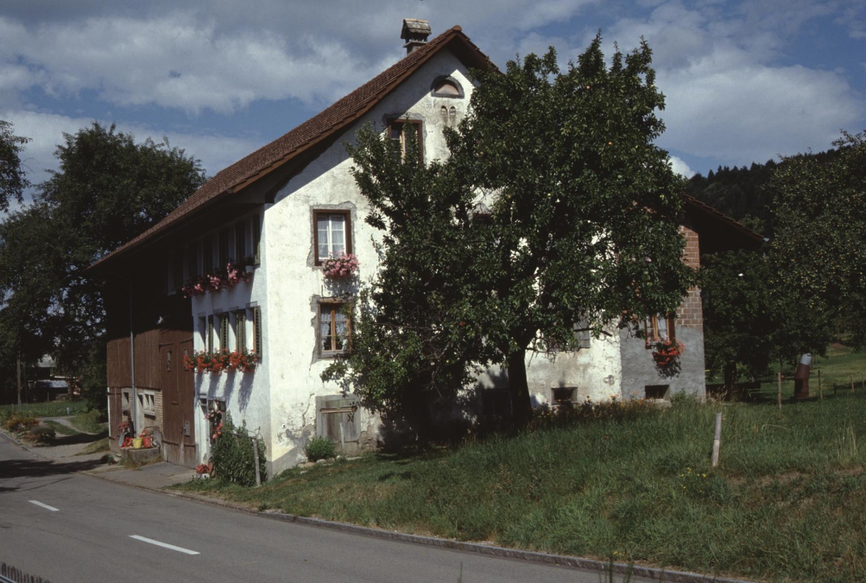 Vorderbettswil, Liegenschaft Mittelholzer