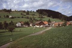 Dörfchen, Halde, Allenberg