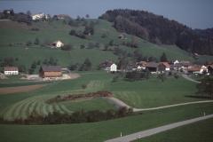 Oberh. Schulhaus Maiwinkel Mit Kiesgrube, Blick auf ehemalige Abfallgrube