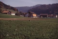 Blick vom Fussballplatz Rtg Dörfchen