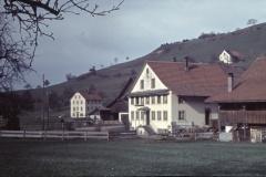 Haus Schneebeli, im Higru. Schulhaus