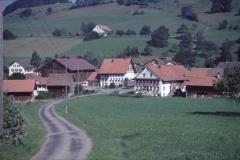Dörfchen, Halde, Haldenweg  Rtg Allenberg