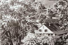 Bettswil + Allenberg