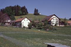 Hinter Allenberg