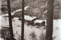 Waldeinsamkeit Jakobsberg