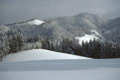 Blick vom Allenberg Rtg Sonnenhof