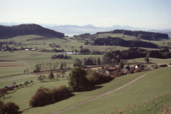 Blick v. oberh. Halde  Rtg Stöckweiher, Rigi