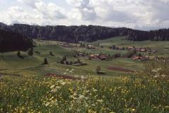 Blick vom Allenberg Rtg Maiwinkel, Wappenswil