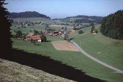 Blick v. Pfännigerbuck Bettswil, Tisenwaltsberg