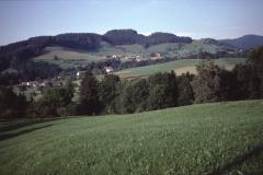 Unterer Tisenwaltsberg. Vorderbettswil, Allenberg