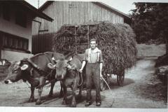 Flarz Walder-Brunner, Fritz Walder (geb. 1918) mit Heufuder