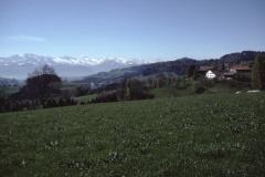 Ghöch Blick in die Alpen