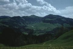 Fehrenwaldsberg, Blick gegen Hüttchopf