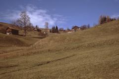 Blick empor zum neuen Rest. ,Berg'