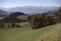 Blick vom Fehrenwaldsberg in die Alpen