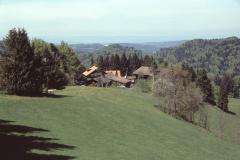 'Berghof', resp. 'Rellstenalp' (Ch. Honegger)