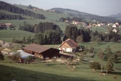 Lee, Chli Bäretswil  - Fehrenwaldsberg