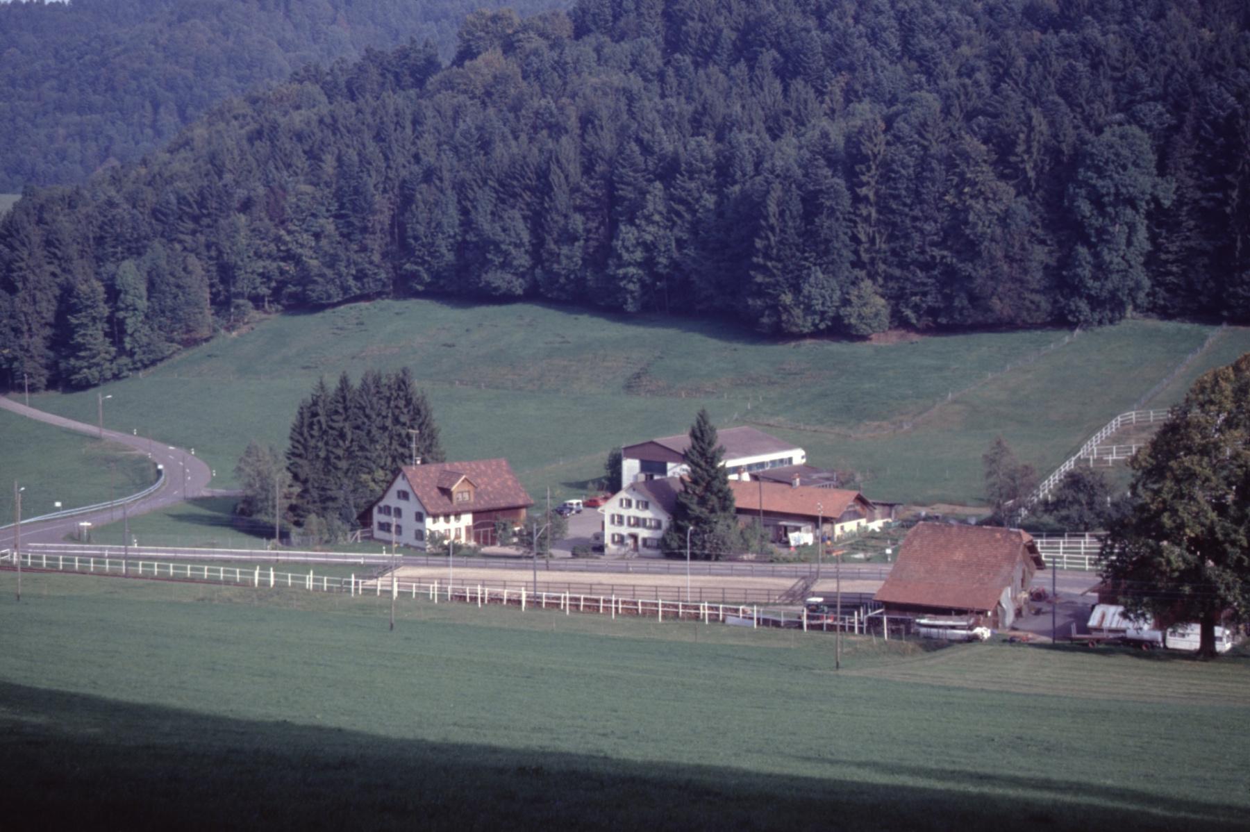 Häusergruppe mit Werkhalle Wäfler