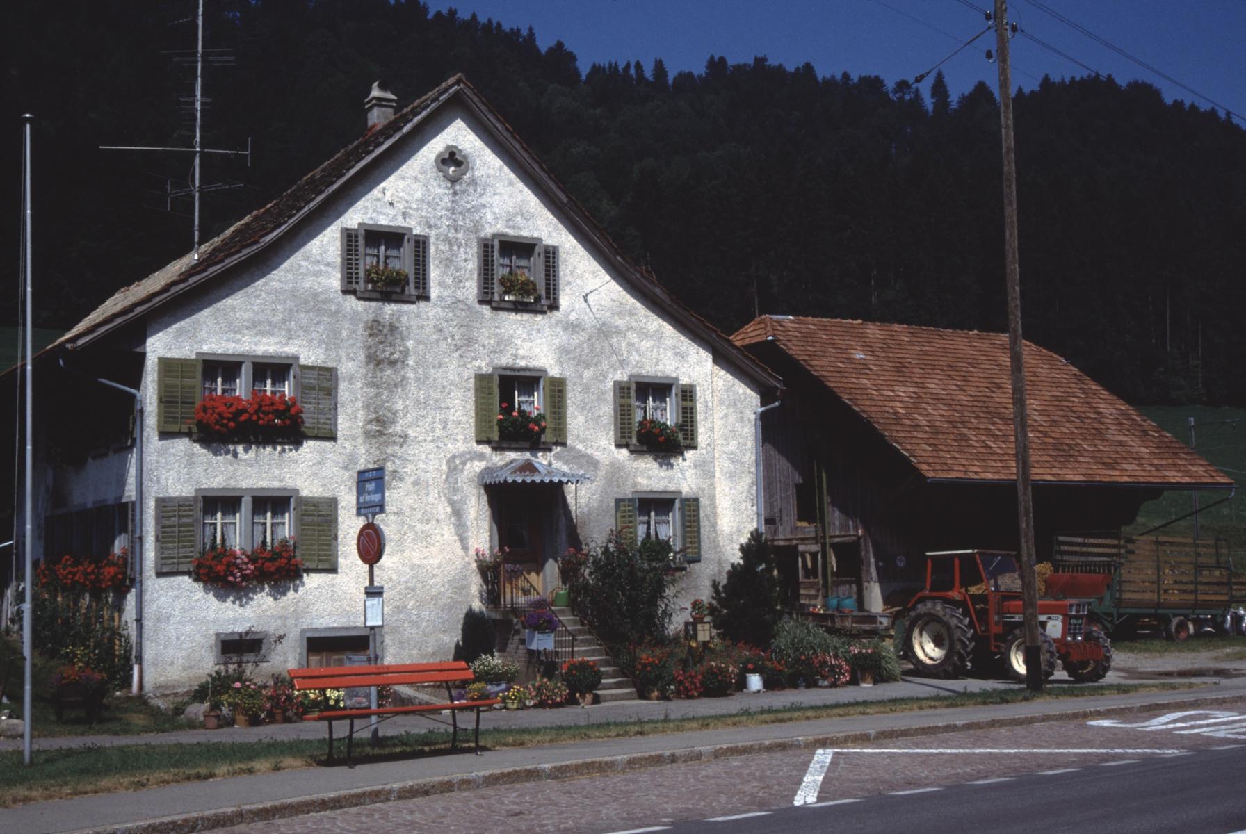 Wohnhaus Fam. Trudi und Willi Küng (Söhne Willi, Rolf und Bruno) (Die Vorfahren der Küng's lebten in Oetwil am See, Sommerau. Einer der Söhne zog ins Bussenthal und heiratete 1914 Ida Lattmann