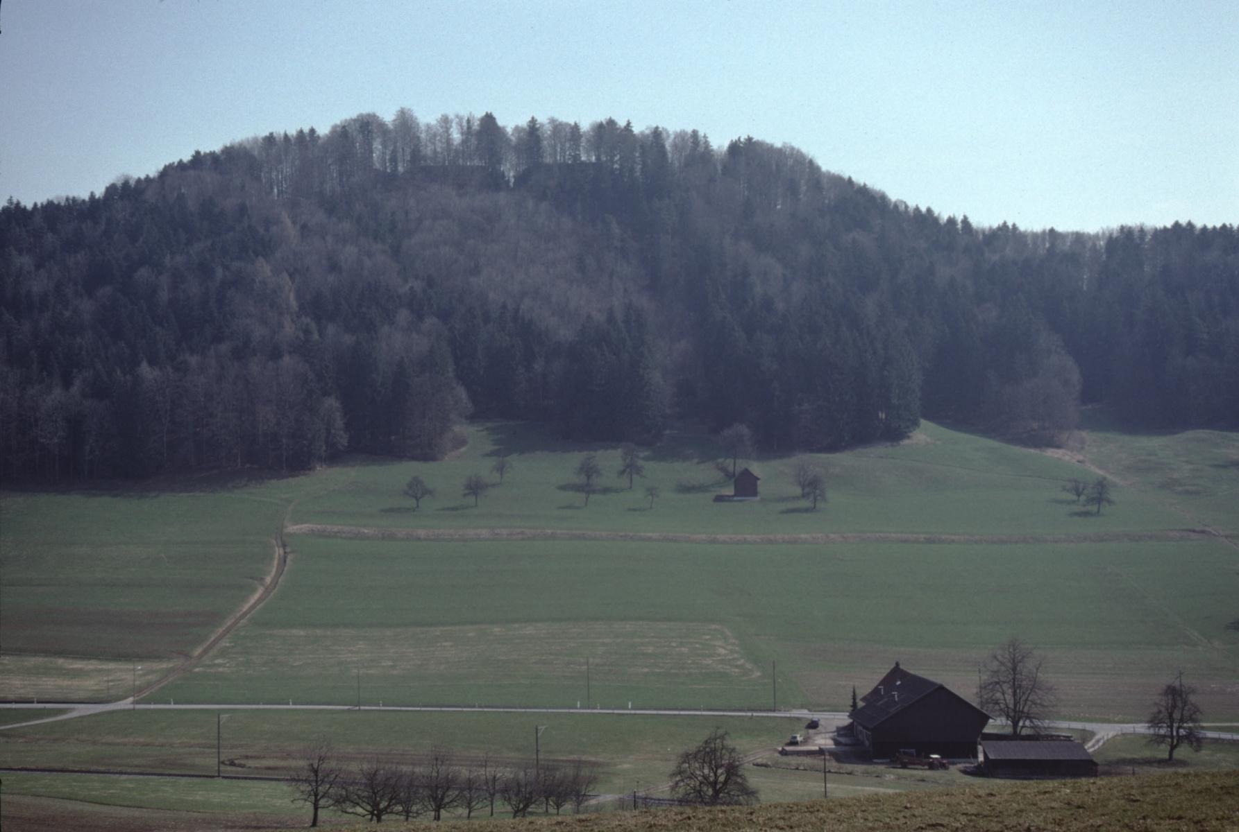 Burghügel Greifenberg - vom Engelstein