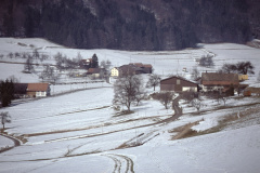 Laubenfelsen Blick von alte Steigstr.