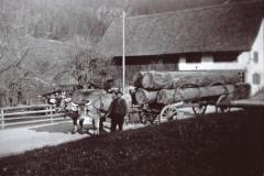 Holzfuhrwerk beim Haus Gredig