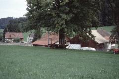 Häuser Küng - Kreuzstr. - alte Stra.fhrg.