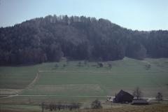 Burghügel Greifenberg - vom Engelst.