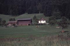 Laubenfelsen