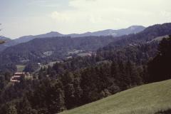 Blick vom Tännler Rtg Altegg, Laupetswil, Bräch oder Carol