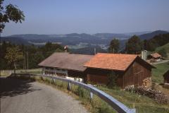 Hint. Dunkelwis, Blick Rtg Tösstal