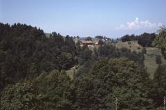 Oberhalb Laupetswil. Blick auf Altegg und Wolfensberg