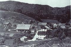 Luftaufnahme Hinterburg
