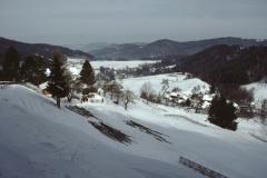 Oberhalb Stollen, Blick auf Hinterburg, Neuthal und Hof