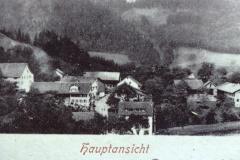 Hinterburg, Gesamtansicht (Teil einer Postkarte)