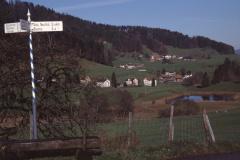 Hinterburg, Blick Rtg Weiher, Neuthal, Hof