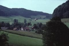 Josenhof, Blick Rtg Rüetschwil (1. Haus von Rüetschwil - neben Fichte - war Armenhaus von Bäretswil)