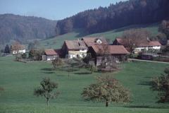 Rüetschwil (links ehem. Armenhaus (Unterwisen, geo))