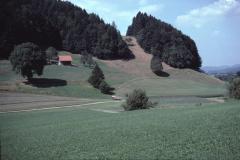 Zwischen Rüetschwil und Wissenbach