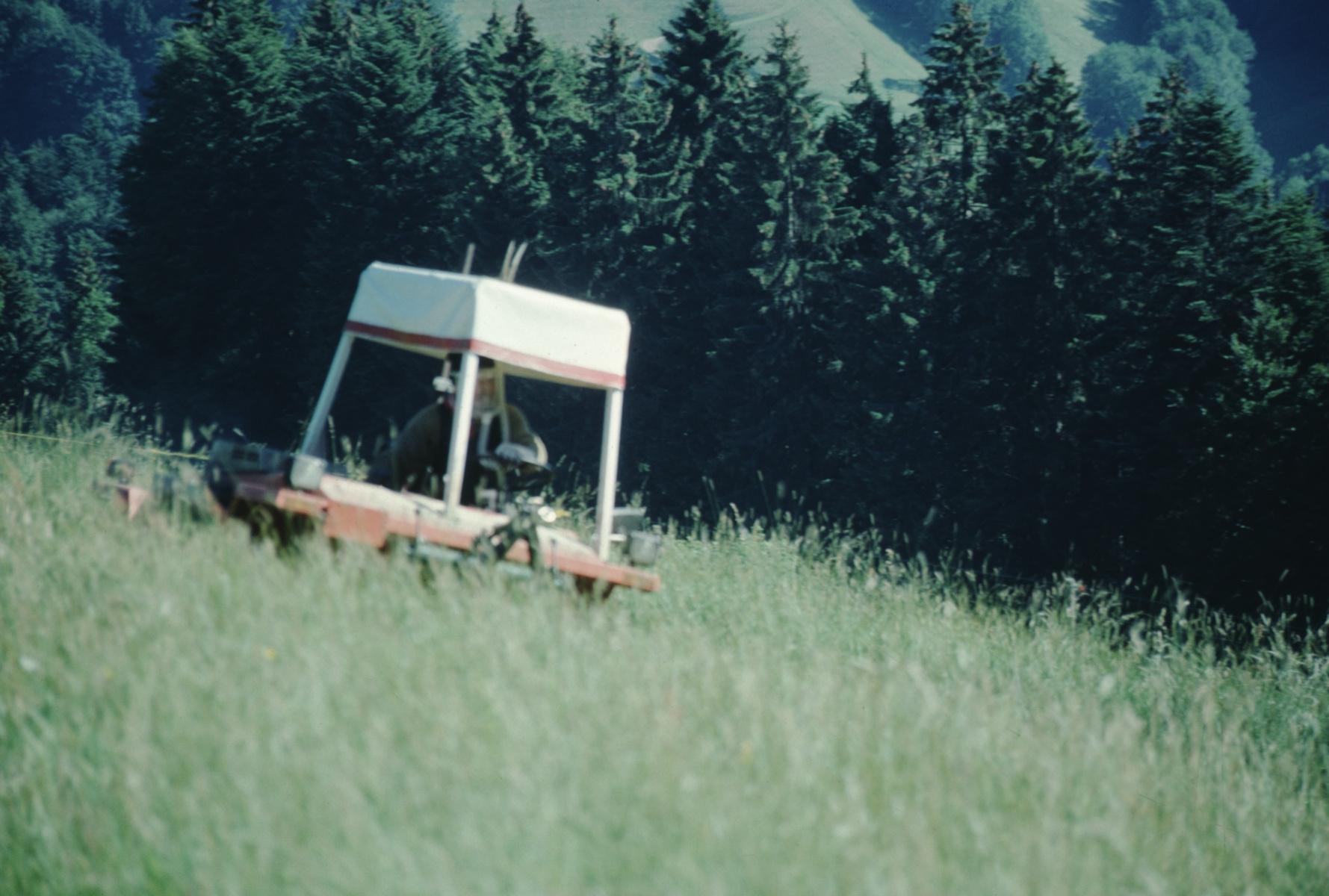 Berghofbauer, Charly Honegger beim Mähen