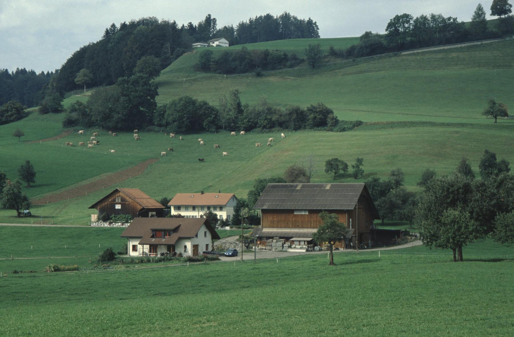 Bettswil - Allenberg, imVG Riethof von Ernst Meier, ennet der Strasse Haus Flückiger