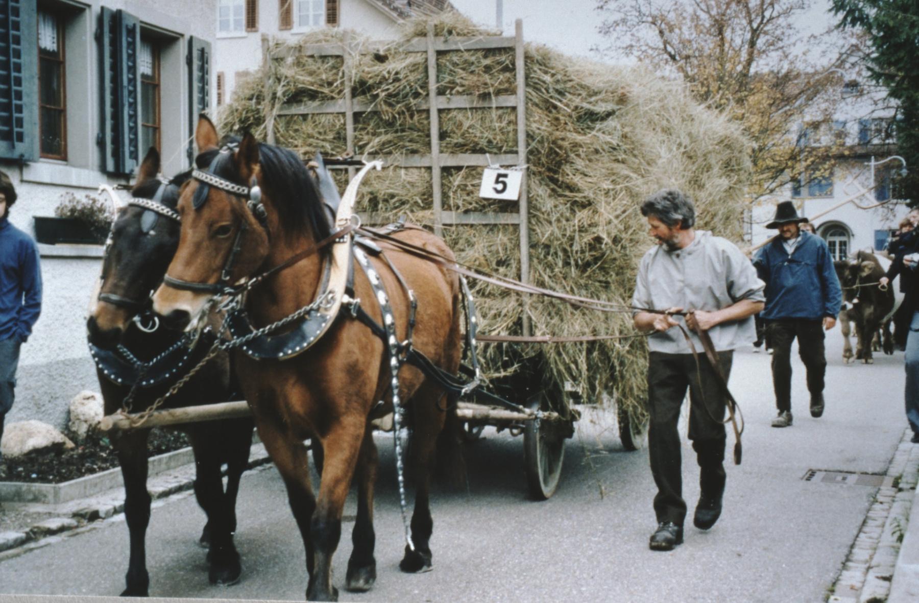 Umzug 100 Jahre Viehzuchtgenossenschaft, Heufuder