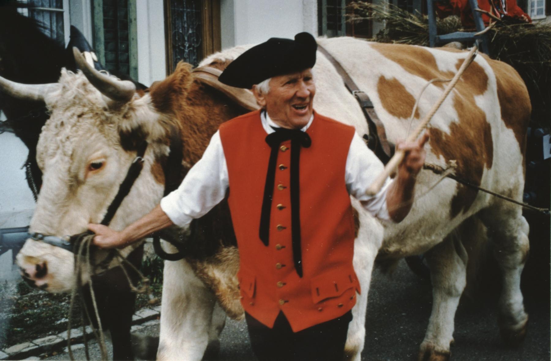 Jubiläumsumzug 100 Jahre Viehzuchtgenossenschaft, Ochsenwagen