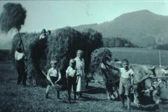 Neuthal, Heufuder laden anno dazumal