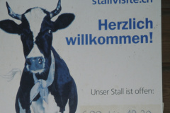 Stall Ernst Meier, Bettswil