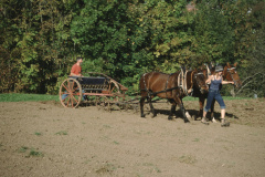 Max Gnehm jun. beim Säen mit Pferd und alter Maschine oberhalb Staatskiesgrube