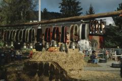 Viehschau 2007, Treicheln
