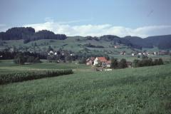 Eichschür, Vord. B. - Bettwil, Allenberg